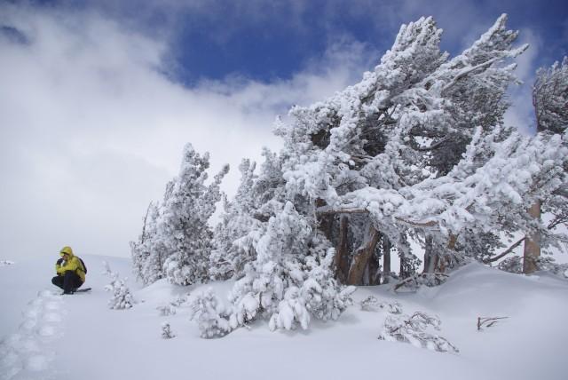 Dan Snowshoeing on Mount Rose
